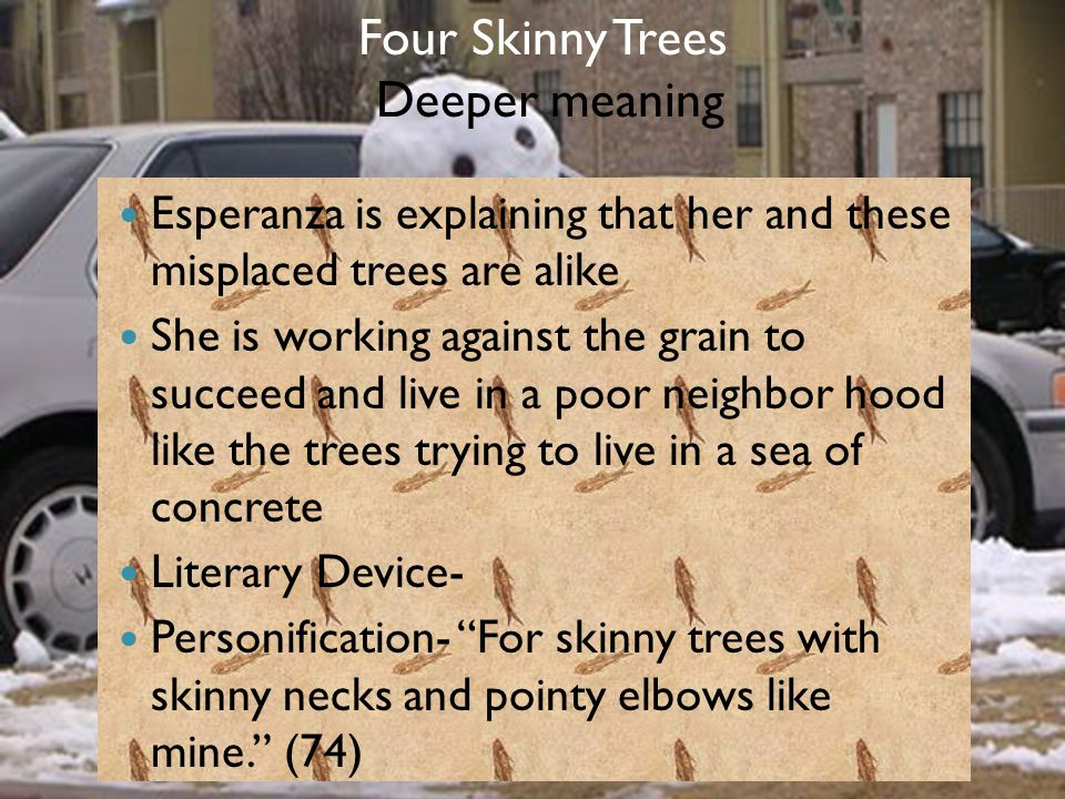 Four Skinny Trees Deeper meaning