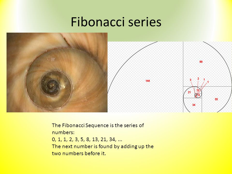 Fibonacci series The Fibonacci Sequence is the series of numbers: