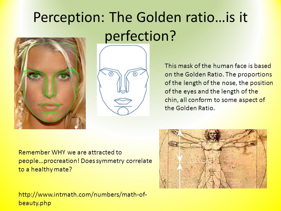 Perception: The Golden ratio…is it perfection