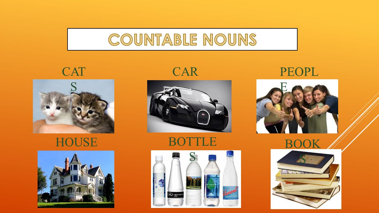 COUNTABLE NOUNS CATS CAR PEOPLE HOUSE BOTTLES BOOKS