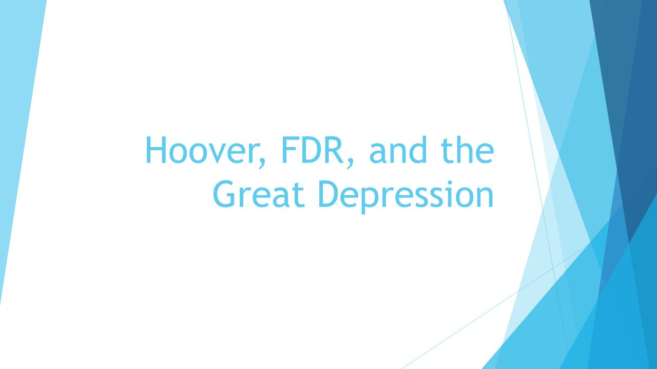 essays on fdr and the great depression