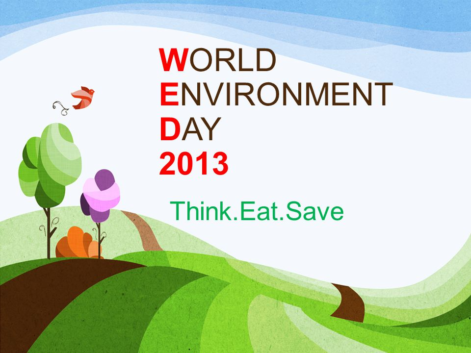 WORLD ENVIRONMENT DAY 2013 Think.Eat.Save