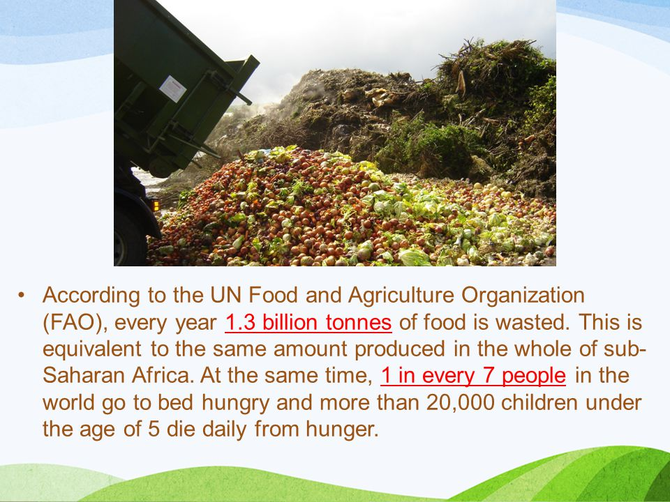 According to the UN Food and Agriculture Organization (FAO), every year 1.3 billion tonnes of food is wasted.
