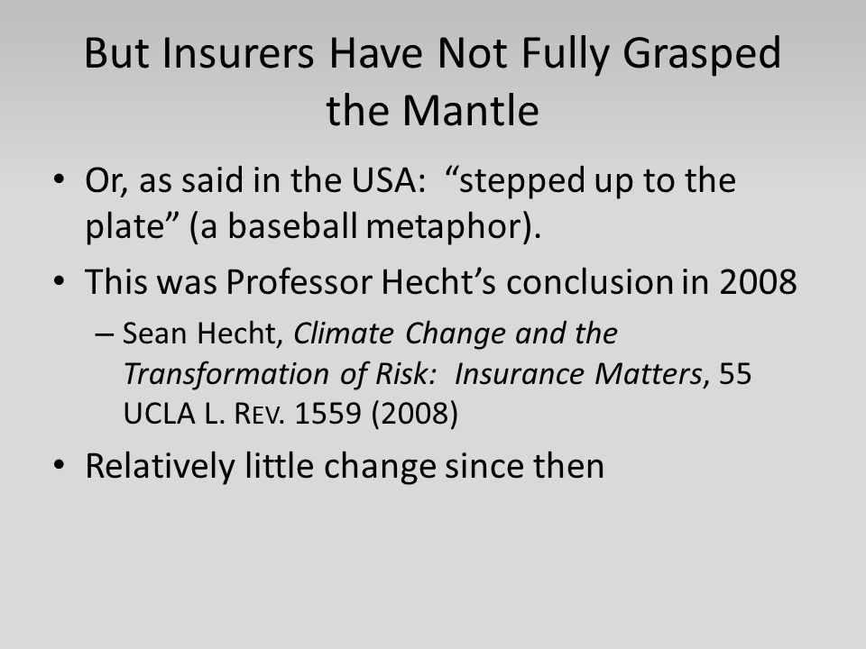 But Insurers Have Not Fully Grasped the Mantle