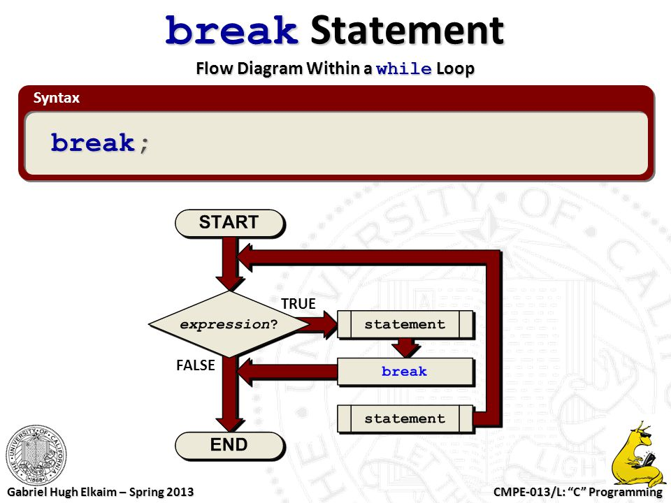 break Statement Flow Diagram Within a while Loop