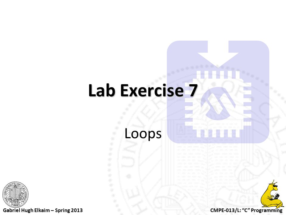 Lab Exercise 7 Loops