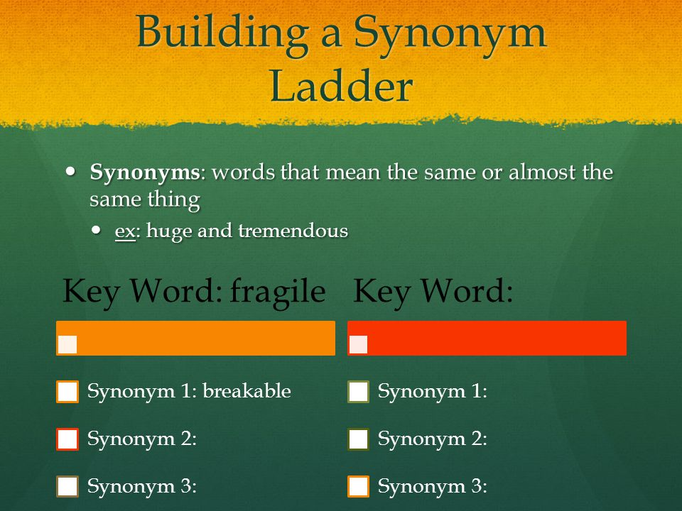 Building a Synonym Ladder
