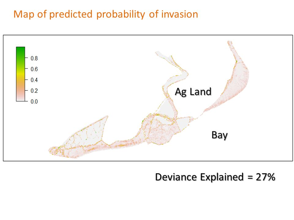 Map of predicted probability of invasion