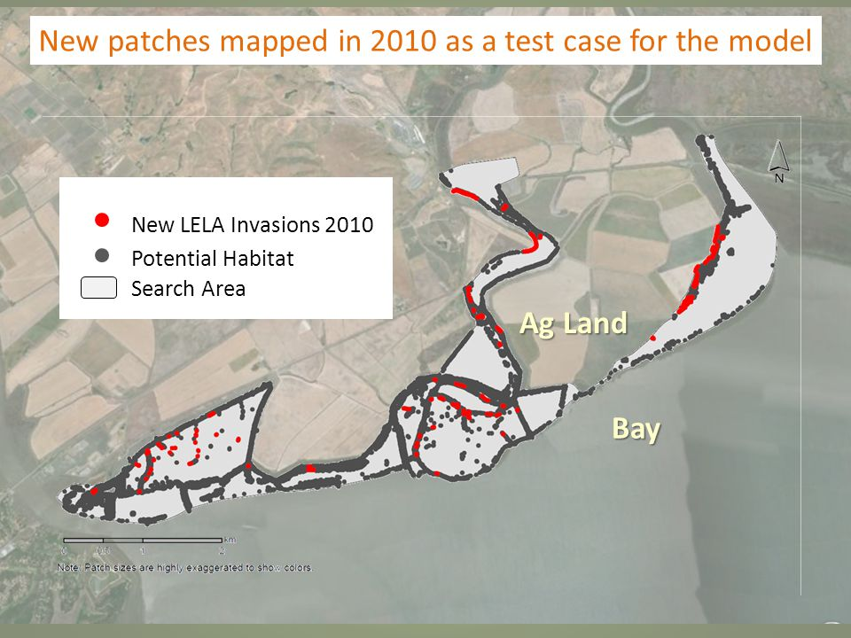 New patches mapped in 2010 as a test case for the model