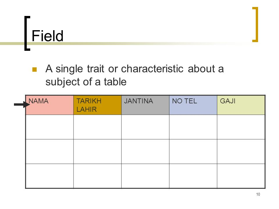 Field A single trait or characteristic about a subject of a table NAMA