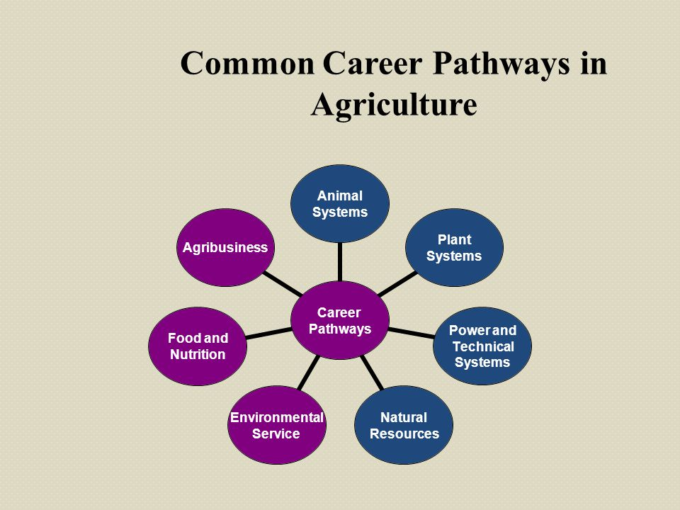 Common Career Pathways in Agriculture