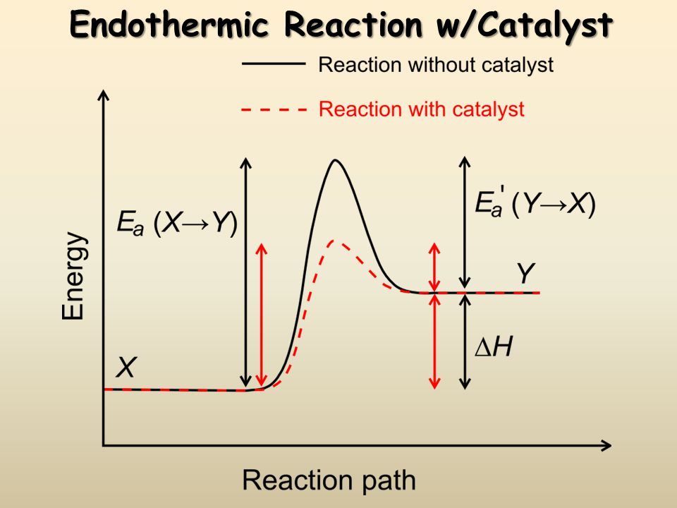 Endothermic Reaction w/Catalyst