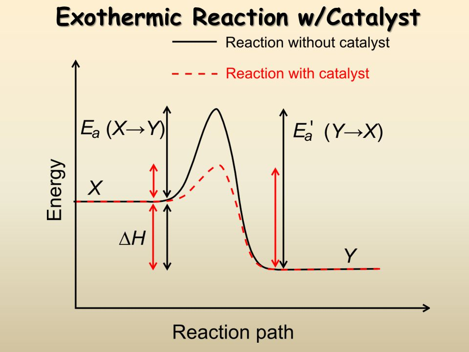 Exothermic Reaction w/Catalyst