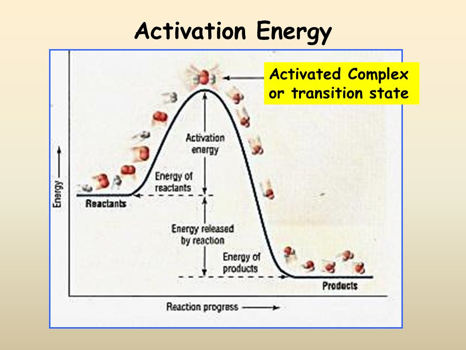 Activation Energy Activated Complex or transition state