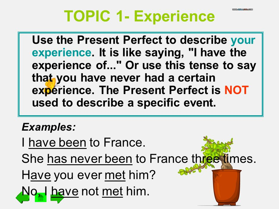 TOPIC 1- Experience