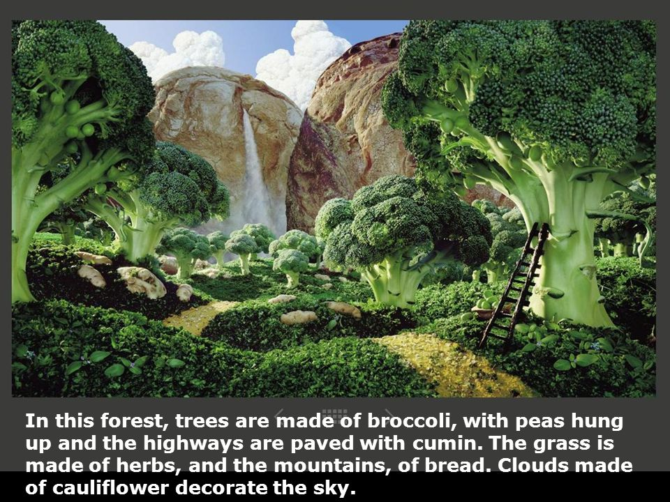 In this forest, trees are made of broccoli, with peas hung up and the highways are paved with cumin.