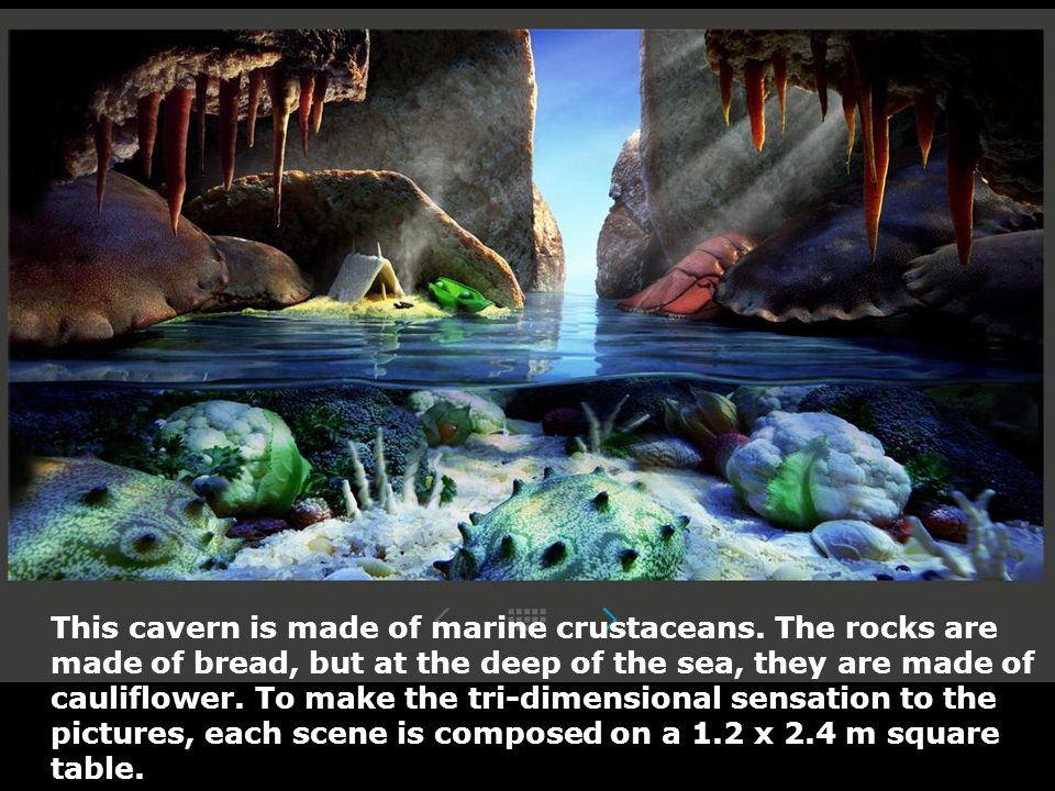 This cavern is made of marine crustaceans. The rocks are