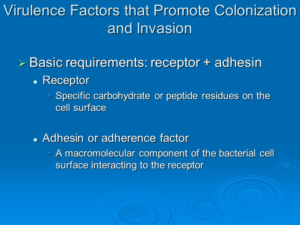 Virulence Factors that Promote Colonization and Invasion