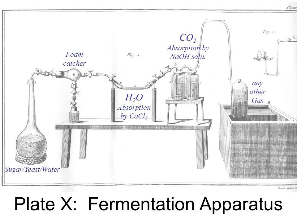 Plate X: Fermentation Apparatus