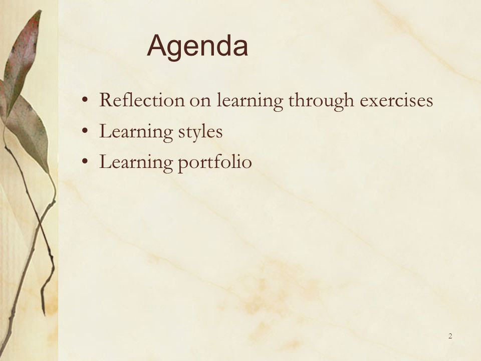 Agenda Reflection on learning through exercises Learning styles
