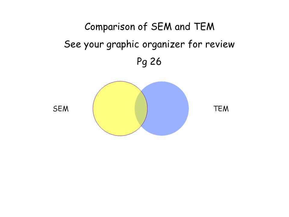 Comparison of SEM and TEM See your graphic organizer for review Pg 26