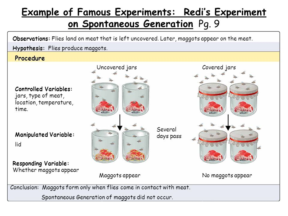 Example of Famous Experiments: Redi's Experiment on Spontaneous Generation Pg. 9