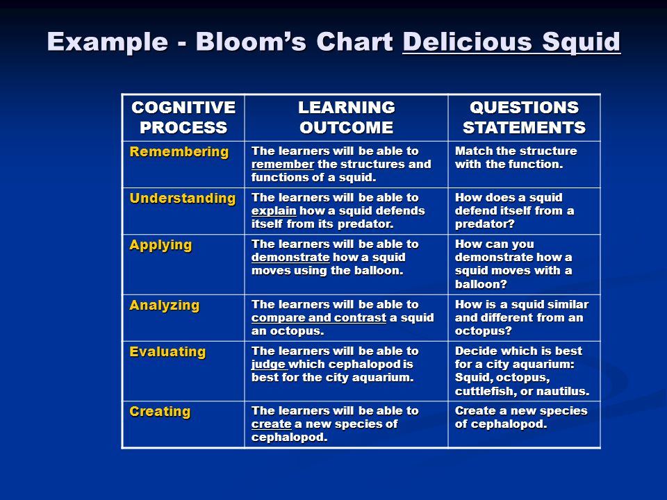 Example - Bloom's Chart Delicious Squid