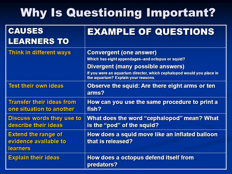 Why Is Questioning Important