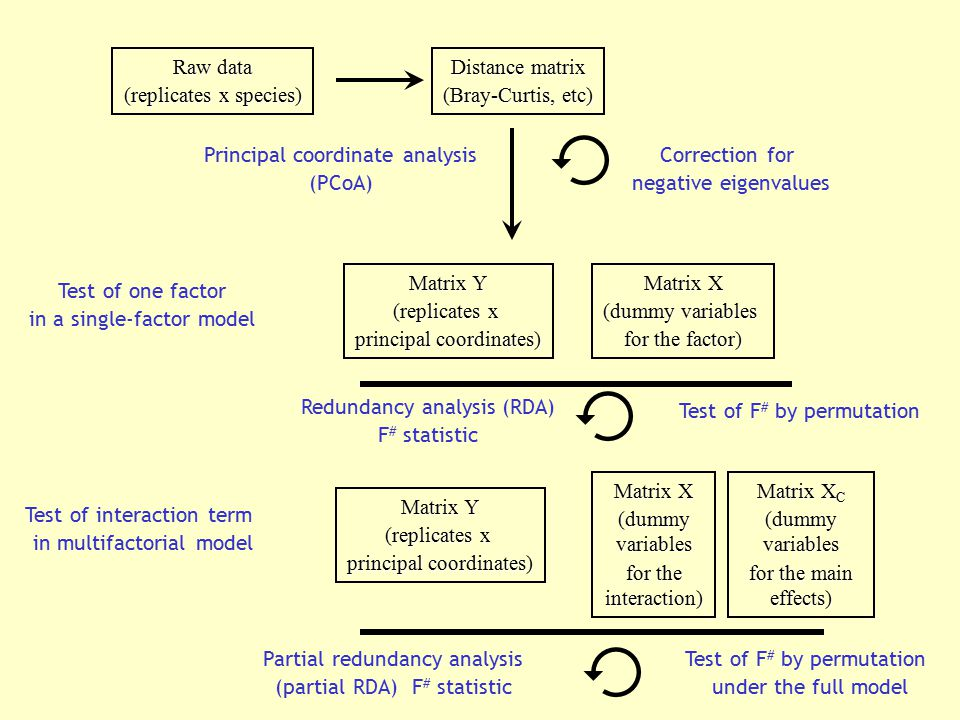 (replicates x species) Distance matrix (Bray-Curtis, etc)