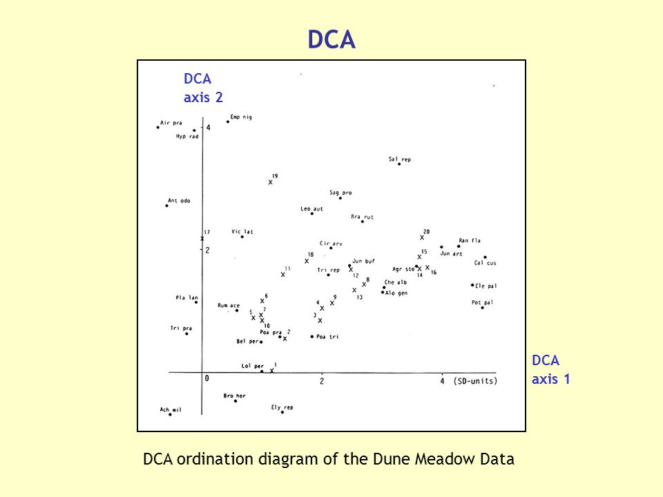 DCA ordination diagram of the Dune Meadow Data