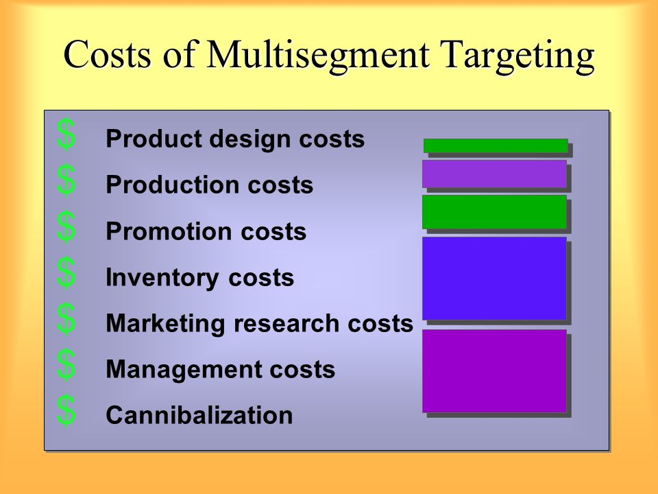 Costs of Multisegment Targeting