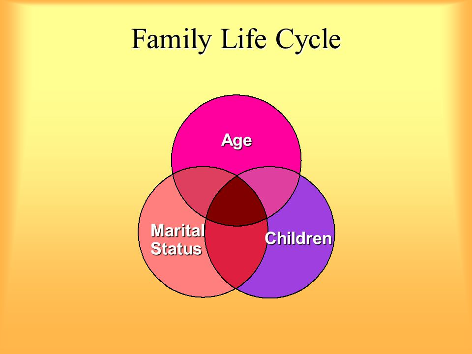 Family Life Cycle Age Marital Status Children