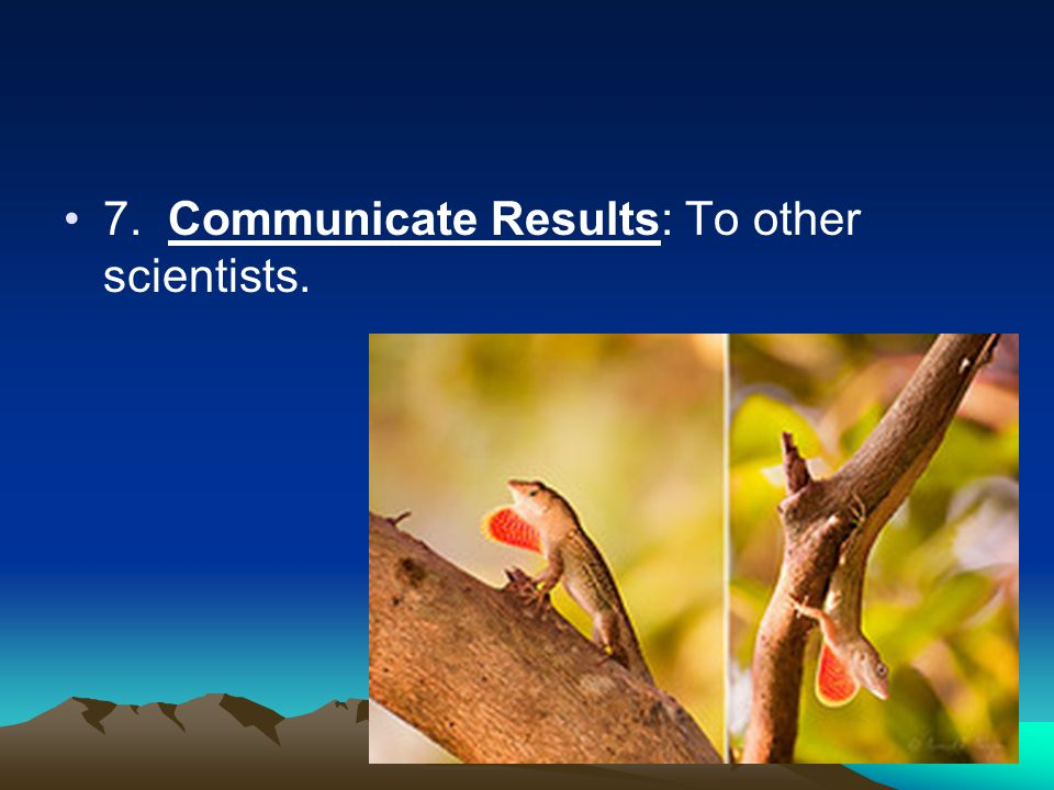 7. Communicate Results: To other scientists.