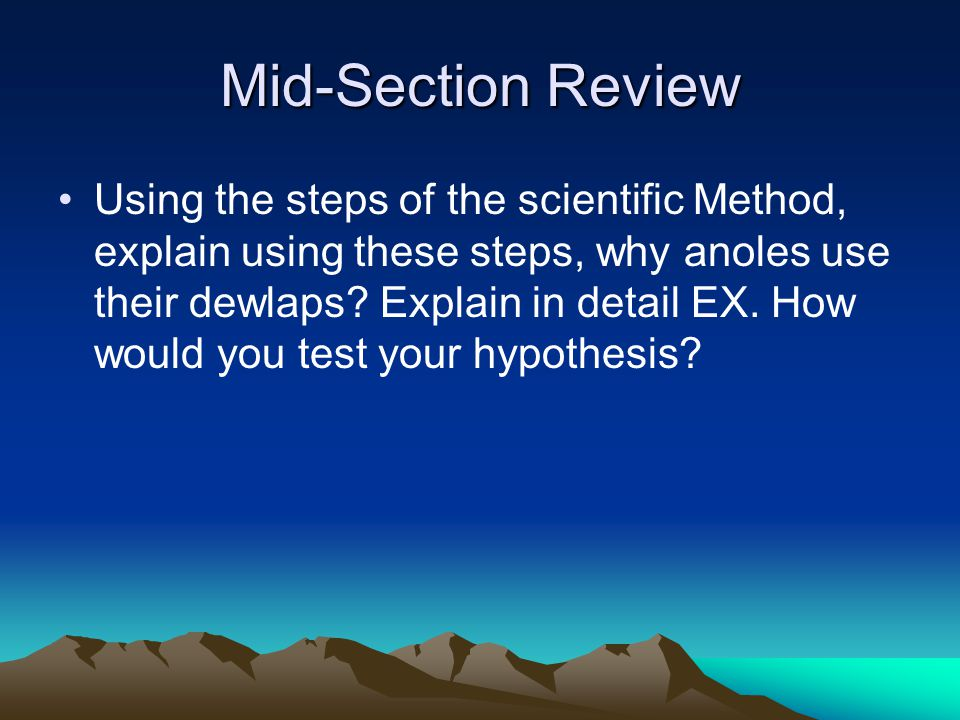 Mid-Section Review