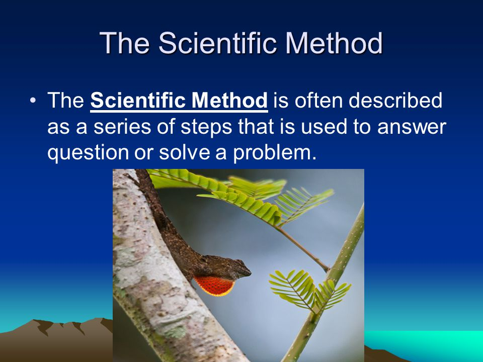 The Scientific Method The Scientific Method is often described as a series of steps that is used to answer question or solve a problem.