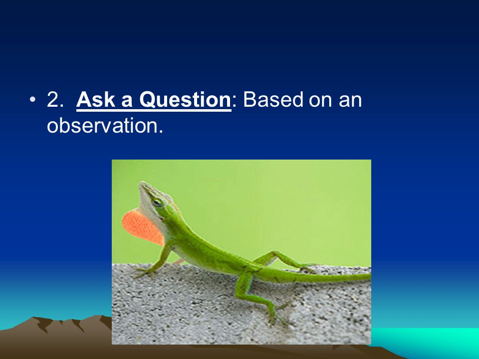 2. Ask a Question: Based on an observation.