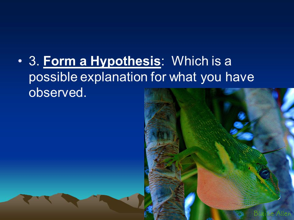3. Form a Hypothesis: Which is a possible explanation for what you have observed.