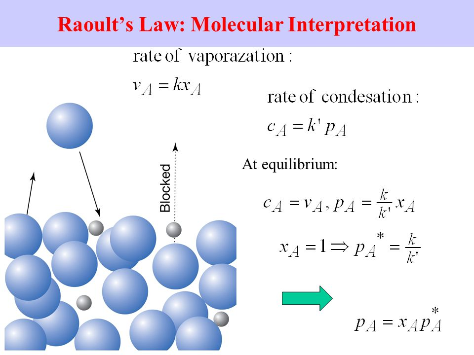 Raoult's Law: Molecular Interpretation