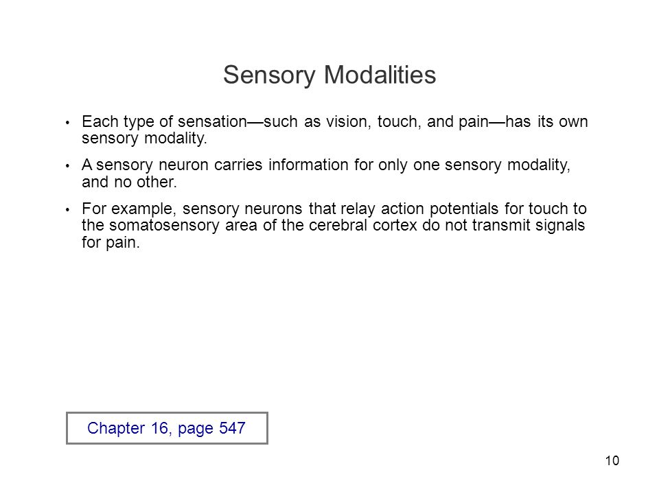Sensory Modalities Each type of sensation—such as vision, touch, and pain—has its own sensory modality.
