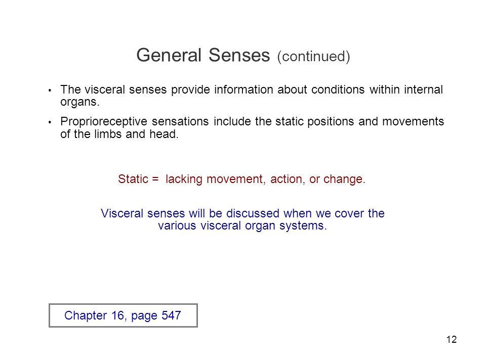 General Senses (continued)