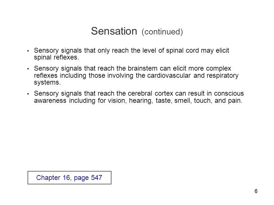 Sensation (continued)