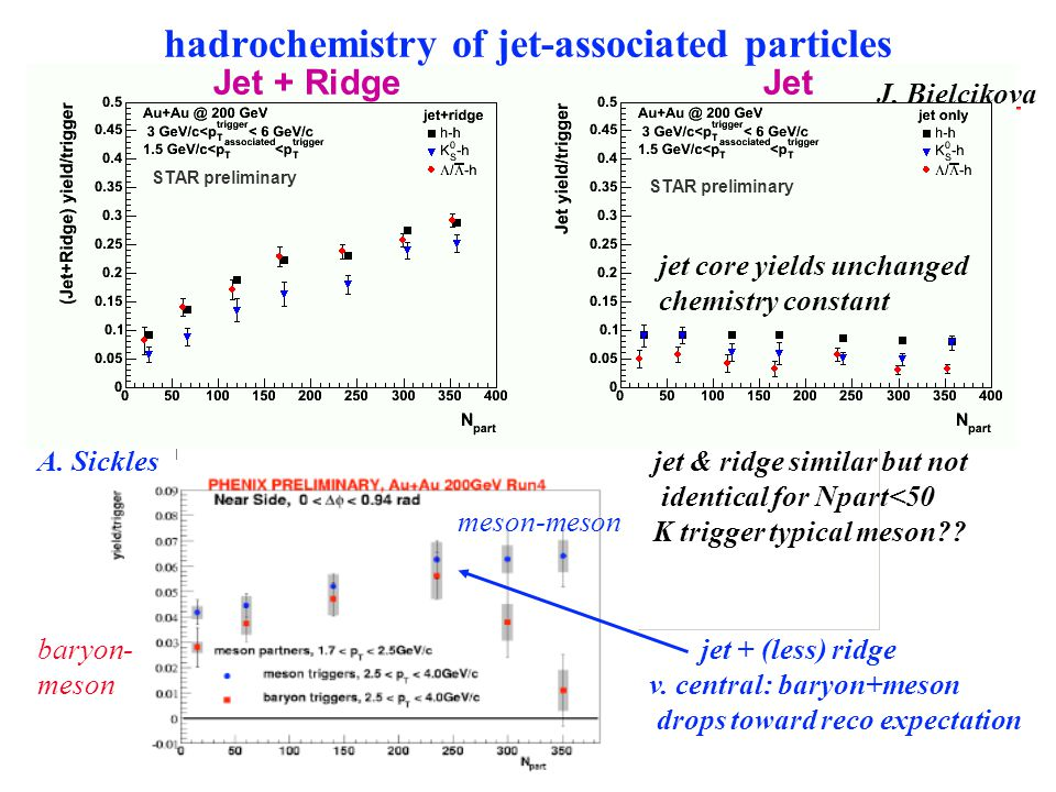 hadrochemistry of jet-associated particles