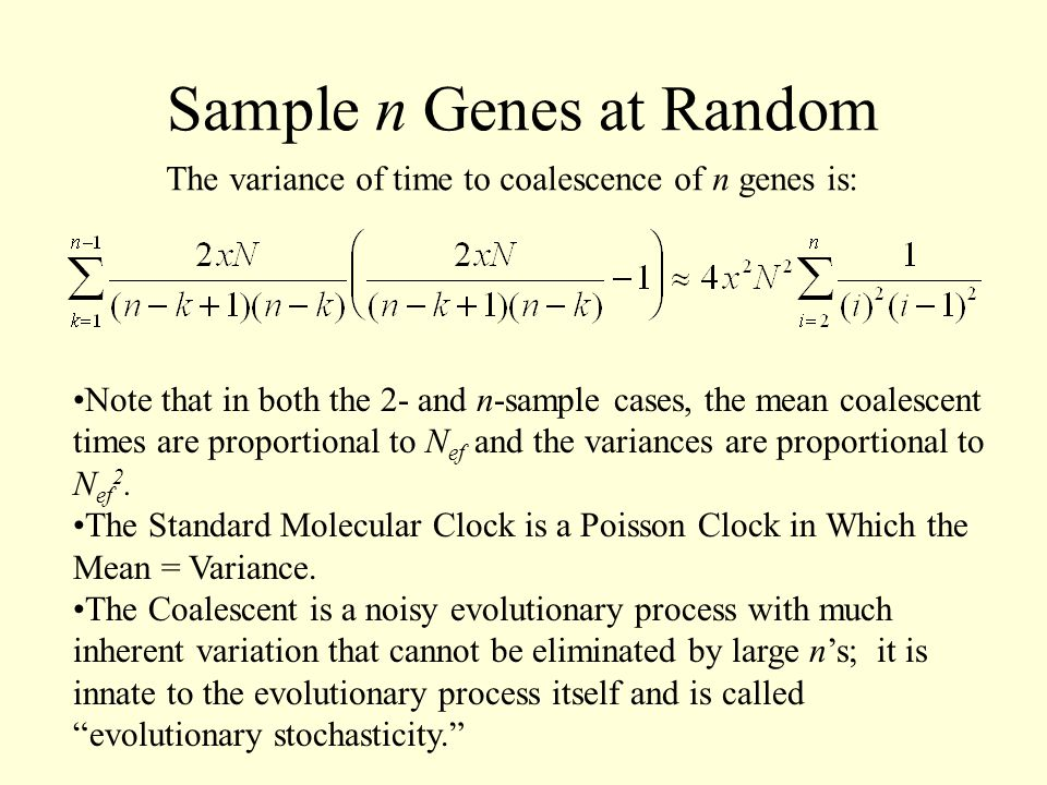Sample n Genes at Random