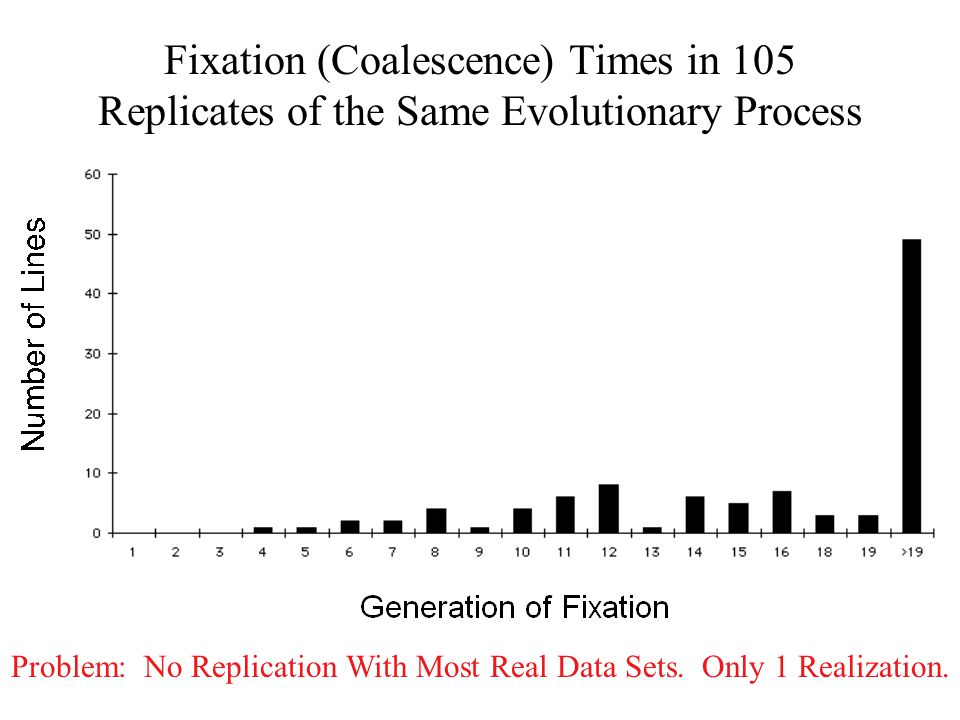 Fixation (Coalescence) Times in 105 Replicates of the Same Evolutionary Process