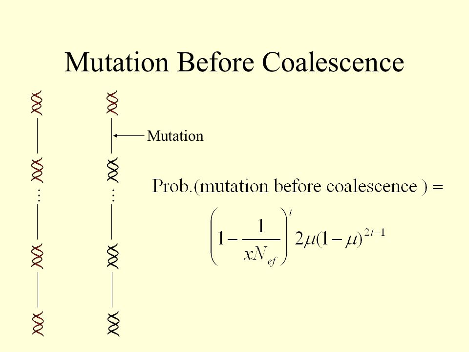 Mutation Before Coalescence