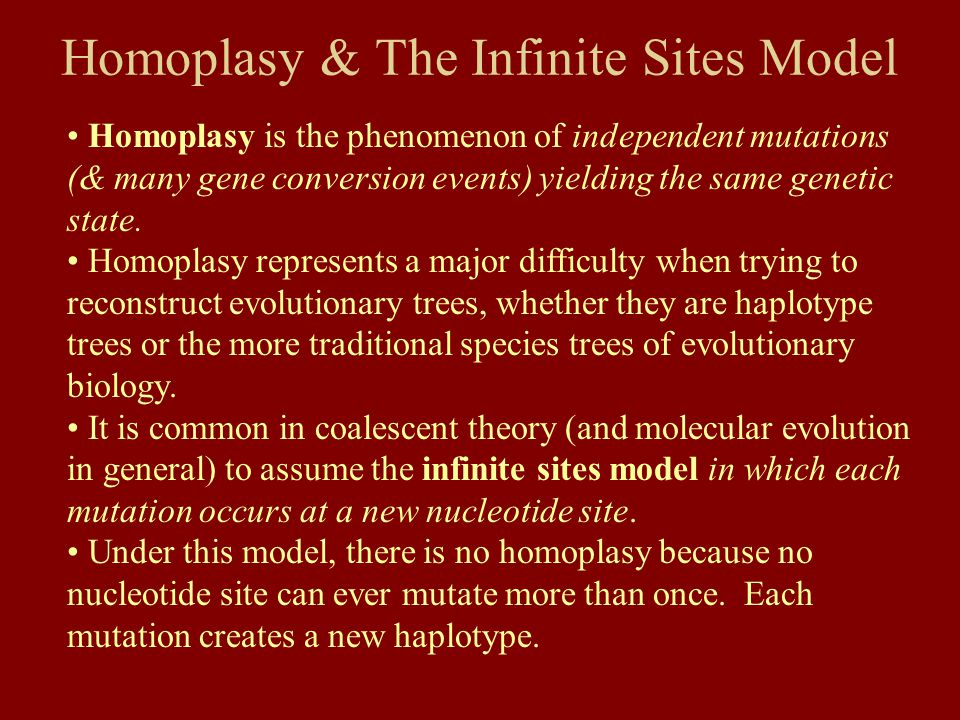Homoplasy & The Infinite Sites Model