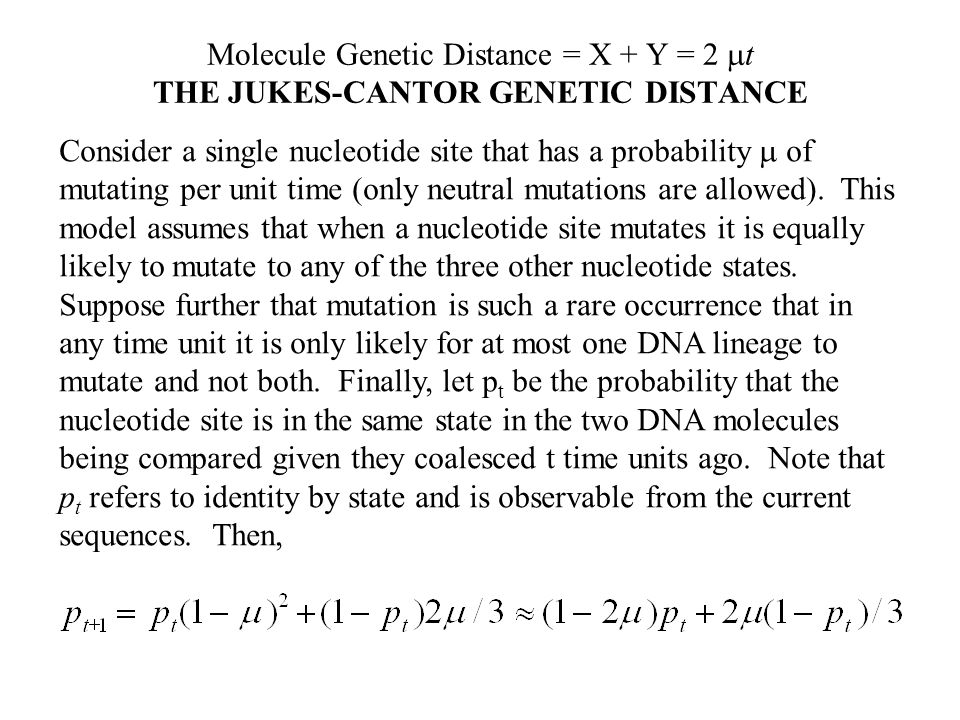 Molecule Genetic Distance = X + Y = 2 t THE JUKES-CANTOR GENETIC DISTANCE