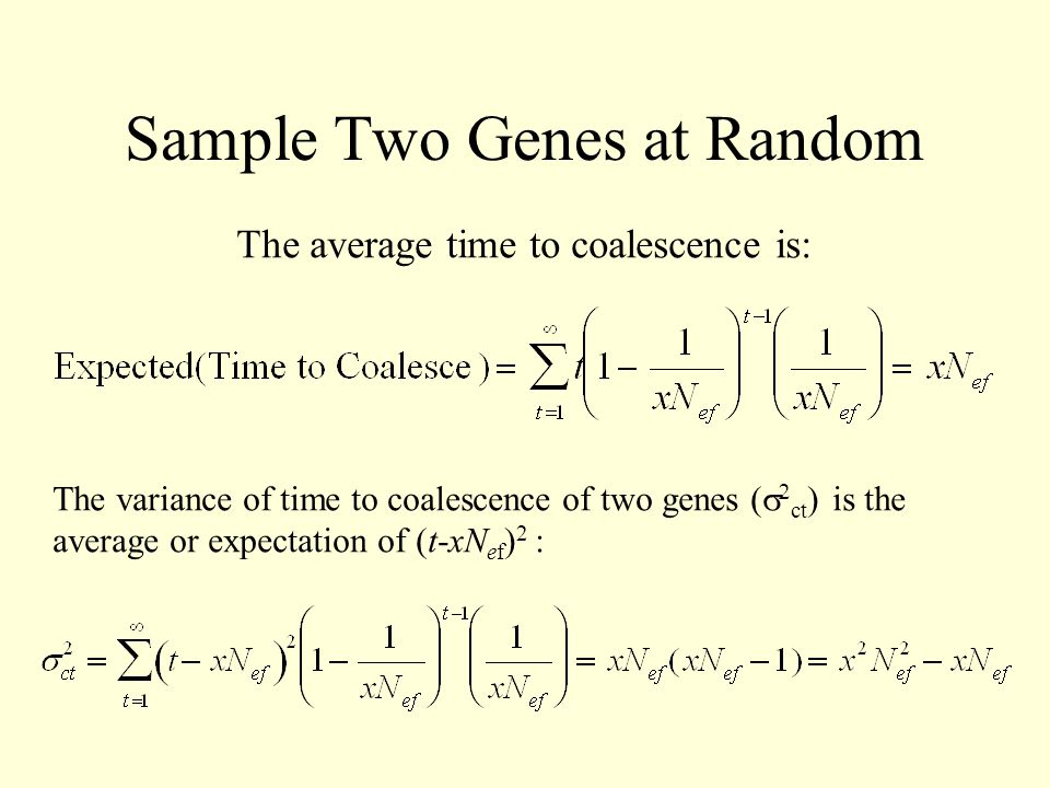 Sample Two Genes at Random