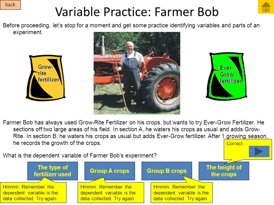 Variable Practice: Farmer Bob