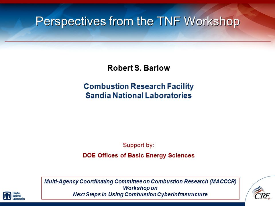 Perspectives from the TNF Workshop